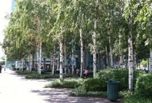 1 Court Square   |   Citigroup